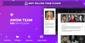Read more about the article The Team Pro – Team Showcase WordPress Plugin